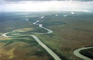 Glyde River, Central Arnhem Land, The Aboriginal Memorial at the National Gallery of Australia